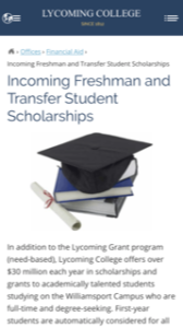 Lycoming College Scholarship Opportunities